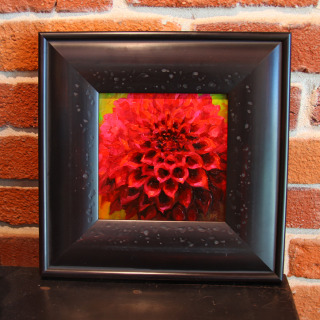 Kelly Paige Standard - Red Dahlia