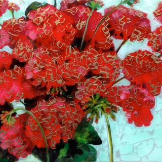 Hill&Stump - Red Geranium