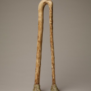 Double Ostrich