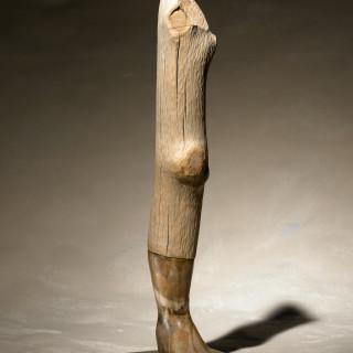 Leg/knee/foot #3
