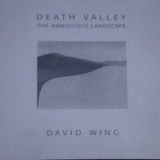 DW ambigious landscapes book