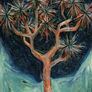 Hill&Stump - Joshua Tree, Night