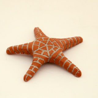 Gail Schneider - Small Starfish