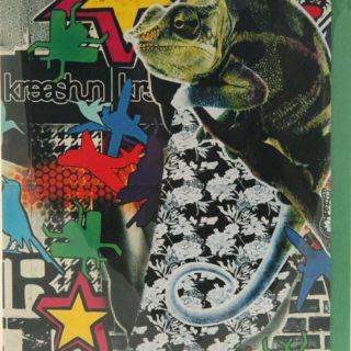 Monty Montgomery - Iguana blank card