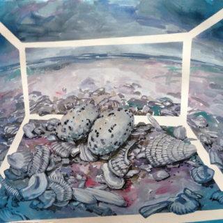 Terrarium Least Tern Eggs - Anna Stump