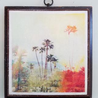 Stefanie Bales Happy Little Palms Minis Exhibition
